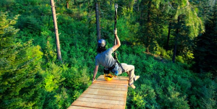 You'll also have 3 separate ziplines to run.