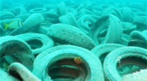 Not Many People Know About This Artificial Reef In Florida… Or How It Went Horribly Wrong