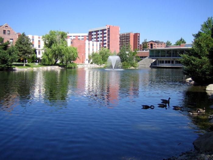 1. Reno has a top-notch university.