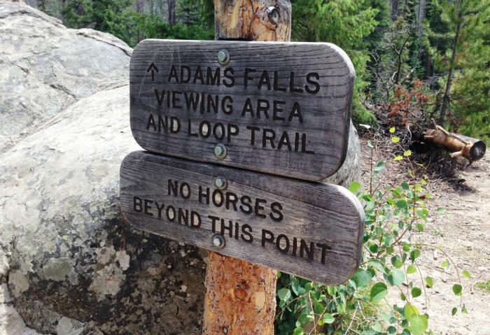 4. Adams Falls Trail (Grand Lake)