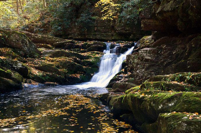 New Jersey: Van Campens Glen, Delaware Water Gap National Recreation Area