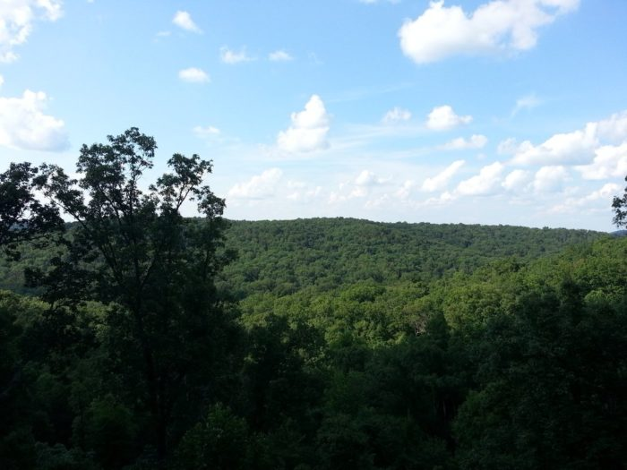 The view of the valley is breathtaking with vivid shades of green for miles.
