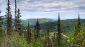 10 Amazing Places You Can Go On One Tank Of Gas In Washington