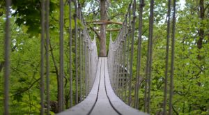 This Canopy Walk In Wisconsin Will Make Your Stomach Drop