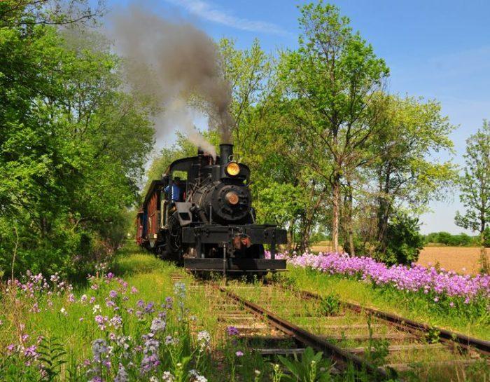 2. Silver Creek and Stephenson Railroad, Illinois