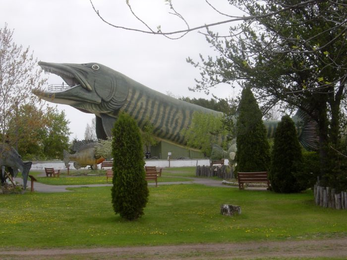 9. National Fresh Water Fishing Hall of Fame
