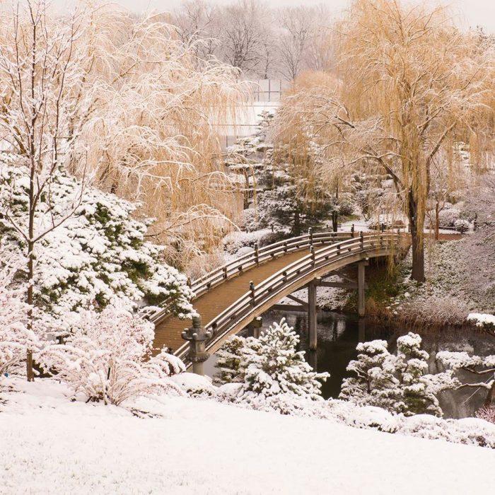 1. Chicago Botanic Garden (Glencoe)