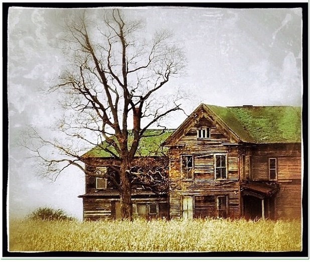 10. It is unclear where this home is, but we can all agree that the tree makes this house look even scarier.