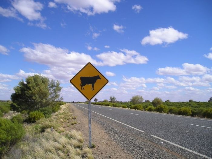 2. It is illegal to not give a farm animal the right of way on a public road.