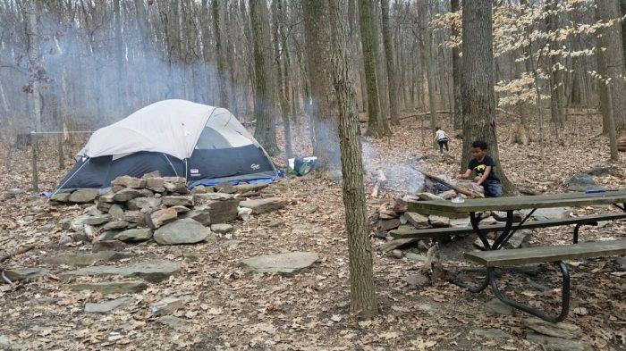 6. Maple Tree Campground, Rohrersville