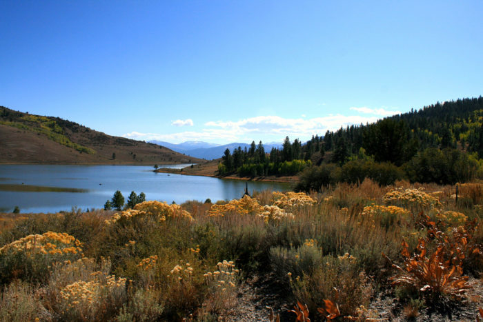 4. Alpine County