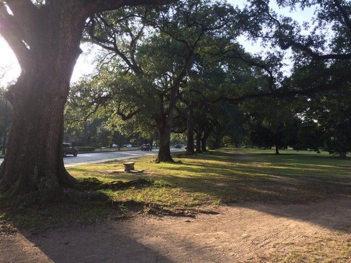 6) Audubon Park