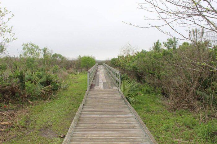 3) Bayou Sauvage National Wildlife Refuge