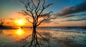 Everyone Should Explore These 15 Stunning Places In South Carolina At Least Once