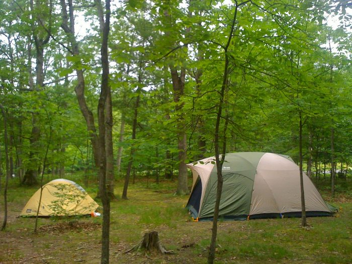12. Go camping