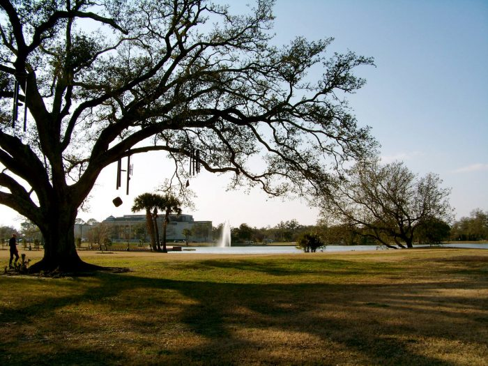 6) The Chime Tree, City Park