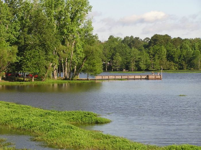 13. Clyde's Crossing, Sabine River Authority Parks, Hwy 181, Zwolle