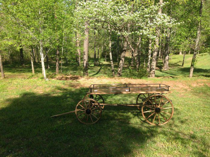 coffin-cart