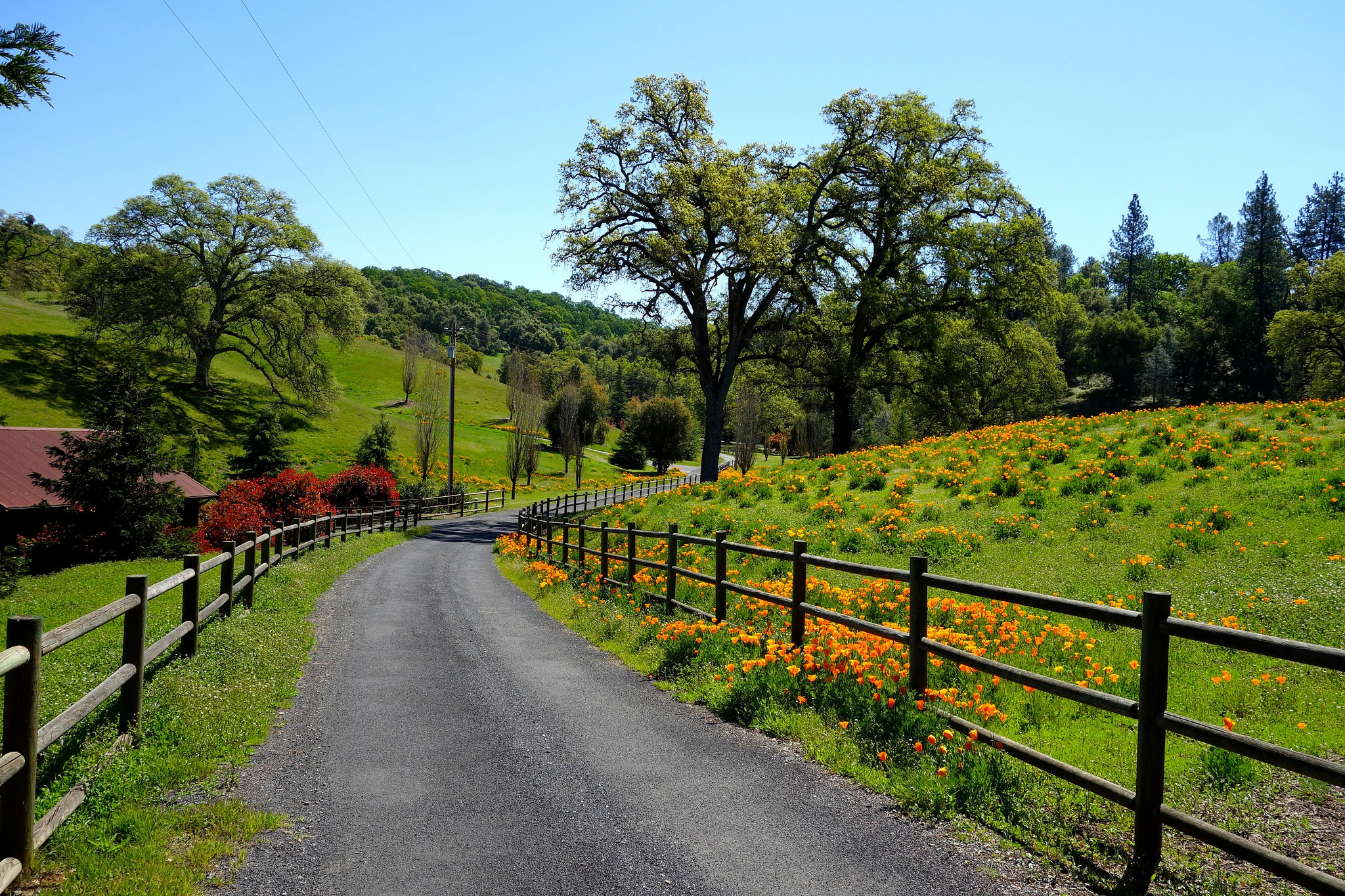 17 Reasons Rural Northern California Is The Best Place To Live