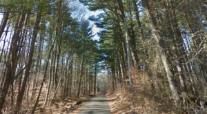 Driving Down This Haunted Connecticut Road Will Give You Nightmares
