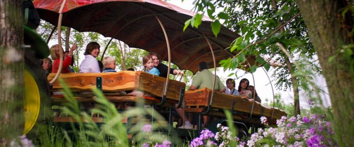 13. Hop on the Discovery Ride at Arbor Day Farm.