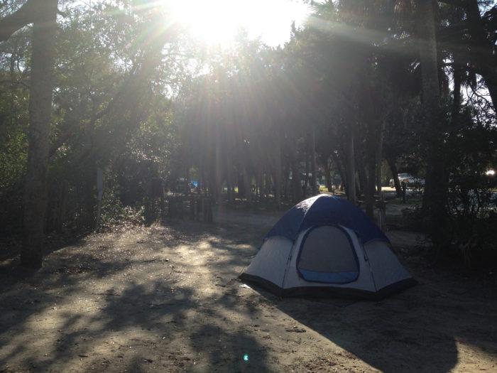 edisto-beach-state-park