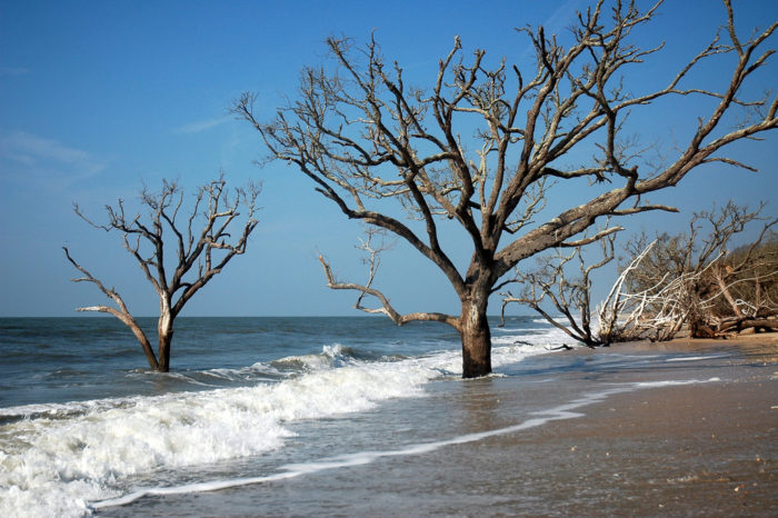 This Island Might Be The Most Beautiful Place In South Carolina