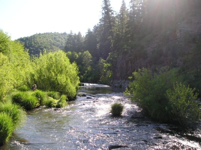 8. The Fall River is the largest cold water spring fed river in the western United States. It runs for 16 miles and feeds many other tributaries.