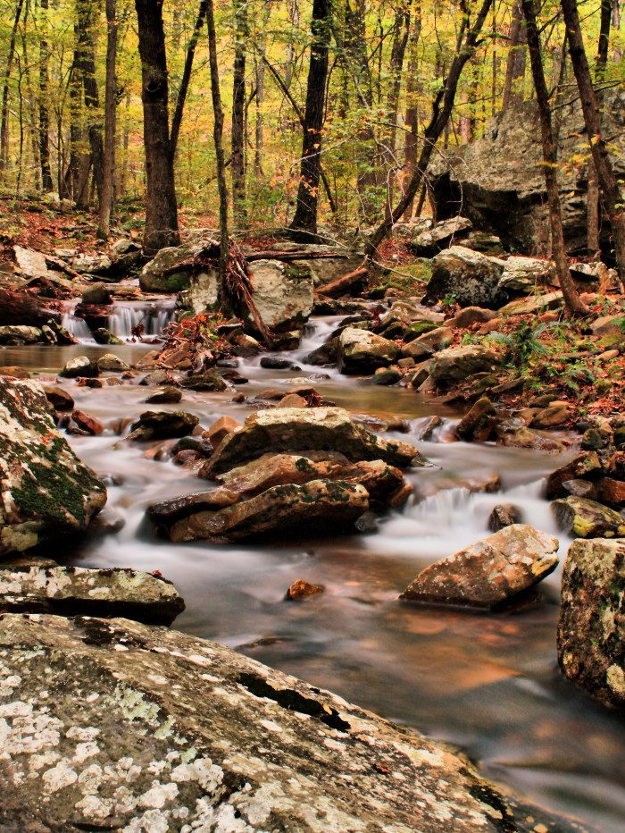 10. Arkansas: Fern Gully Falls