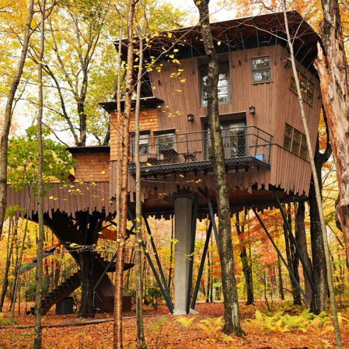15 Most Amazing Treehouses In America Lakes Dollhouse Tree House Designer on lake house community, lake house girls, lake house house, lake house numbers,