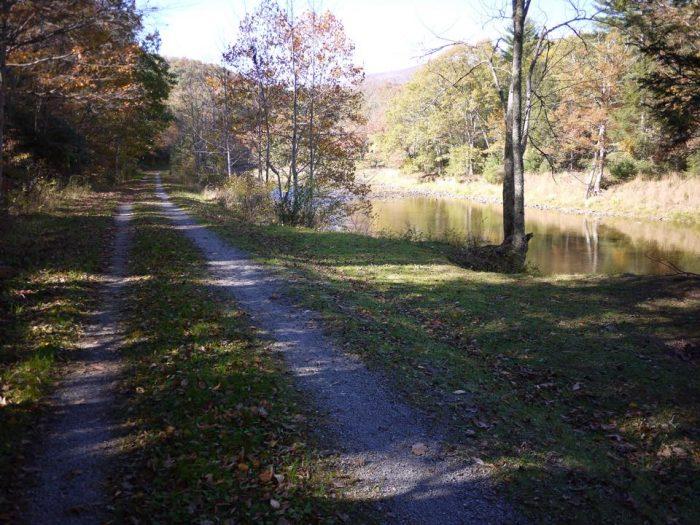 4. Greenbrier River Trail