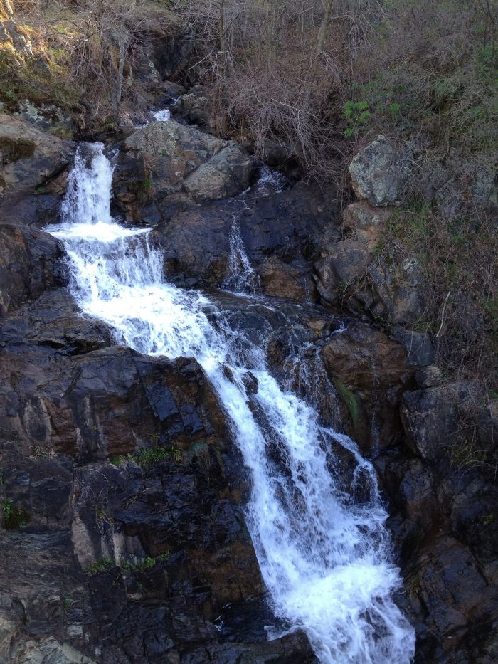 9. Hidden Falls Trails, Auburn Regional Park