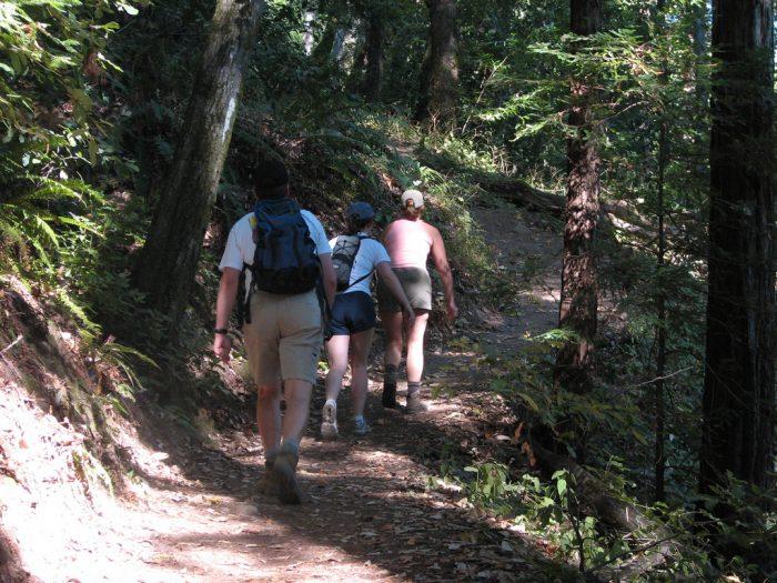 6. Take A hike
