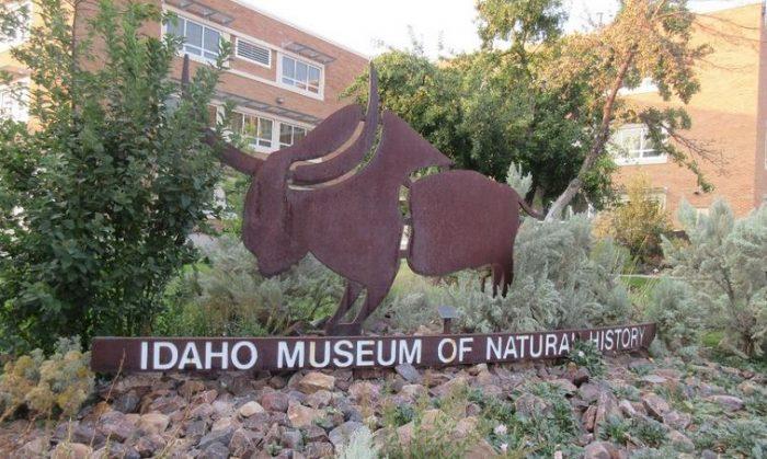 9. Idaho Museum of Natural History, Pocatello