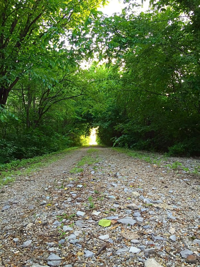 1. The Rosebud Trail (Rails to Trails)