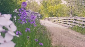 Take A Stroll Through History Along The Sugar River Trail In Wisconsin