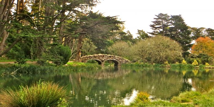 7. There are over 220 parks and open spaces scattered throughout the city.