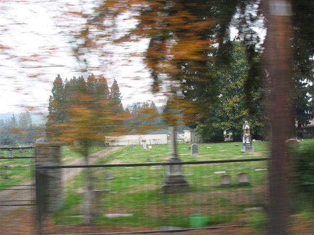 3. Carnation Cemetery