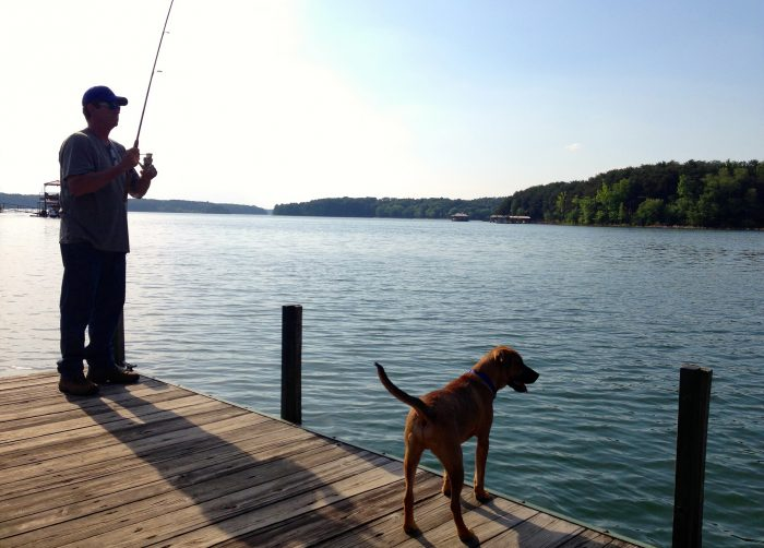 10 magical lakes in south carolina to make your summer great for Fishing lake hartwell