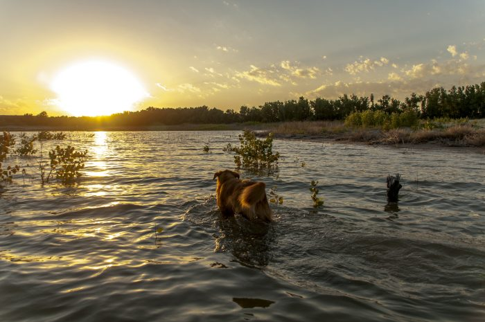 7. Lake McConaughy, near Ogallala