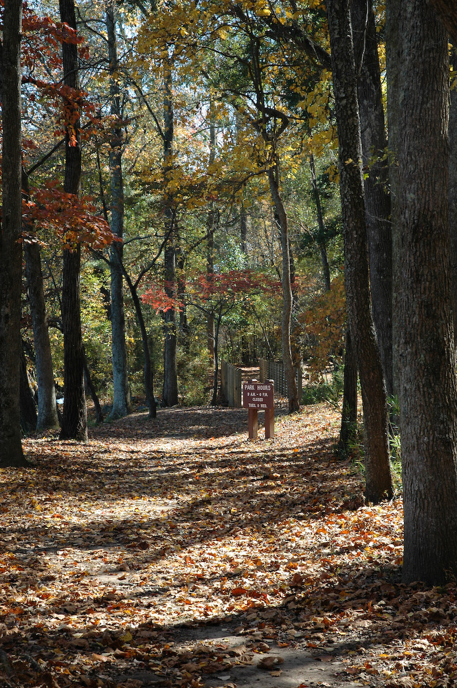 5. Landsford Canal in Landsford Canal State Park - Catawba, SC