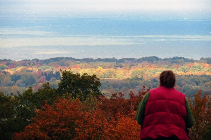 9. Experience a unique view of Lake Erie at Luensman Overview Park in Brocton.