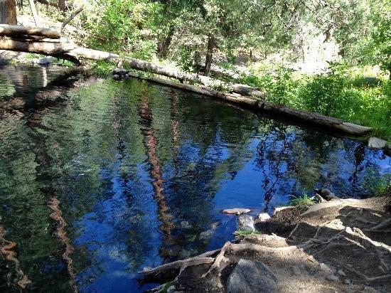 New Mexico: The Jemez Falls Area