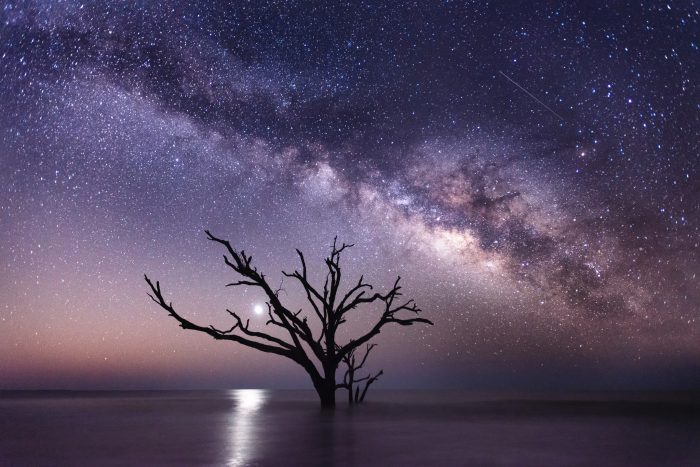 11. This night sky beyond a boneyard beach in South Carolina may forever change the way you feel about everything.