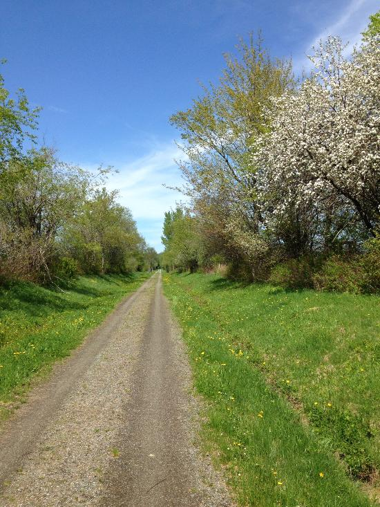 6.  Newport Bike Path