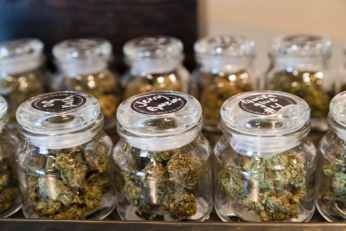 3. When they see a weed store, their eyes get as wide saucers.