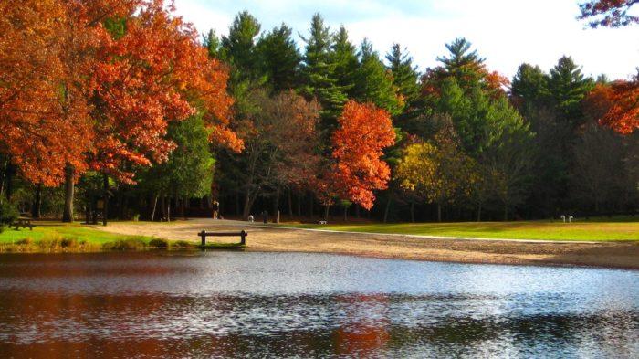 10. Stratton Brook State Park (Simsbury)
