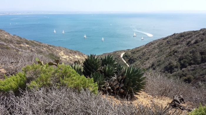 10. Bayside Trail at Cabrillo National Monument in San Diego