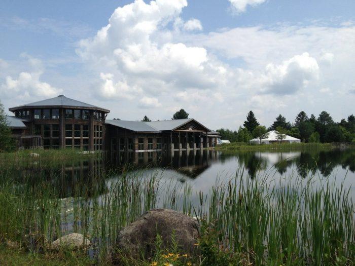 7. The Wild Center, Tupper Lake
