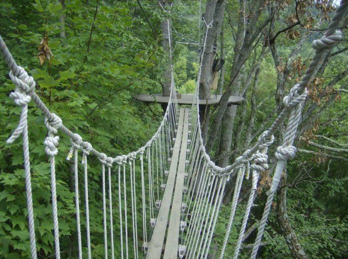 Yelp / LaDonna N. & A Jaw Dropping Canopy Walk In North Carolina